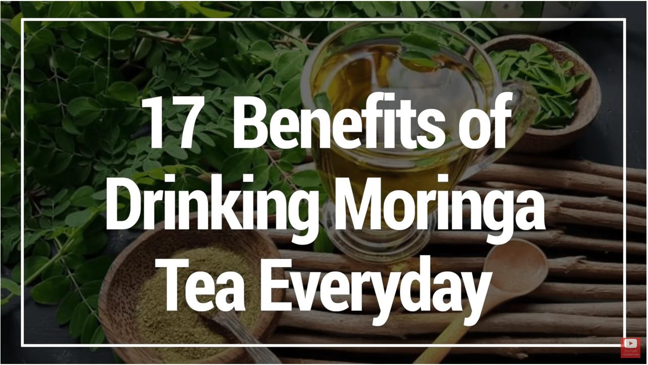 17 Benefits of Drinking Moringa Tea Everyday
